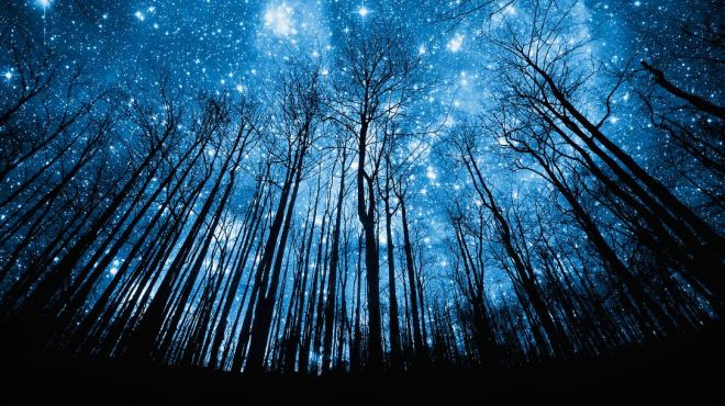 ForestStars