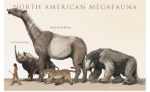 cropped-megafauna-of-north-america1.jpg