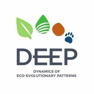 cropped-deep-logo_c-1