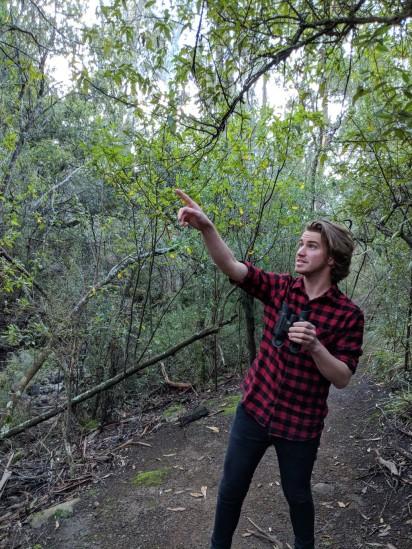 Matt Fielding - Spotting a Raven