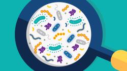 Microbiome FINAL-01_0