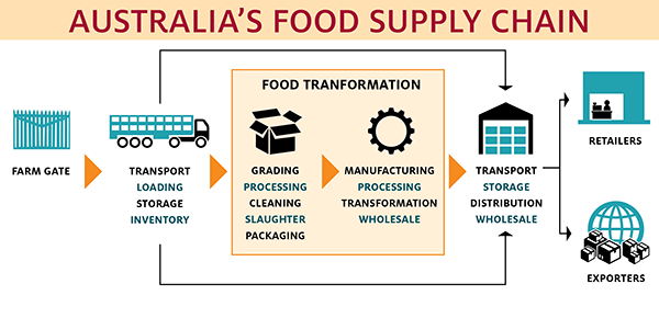 food-supply-chain-infographic